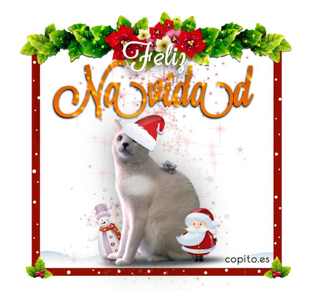 Copito os desea Feliz Navidad